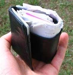 Overstuffed Wallet | ENPIO