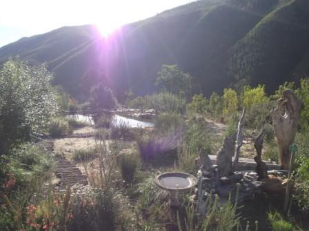 Outeniqua-Sunrise-garden