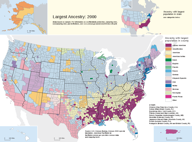 Alternate History Weekly Update One Way To Divide America Ethnicity - Alternate history us map