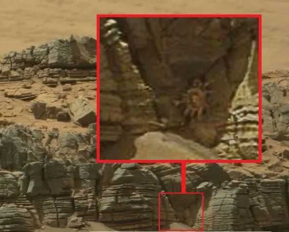Did Curiosity Snap An Image Of A Mysterious Creature On Mars?