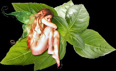 Es un símbolo puro del amor, ya que si la utilizas en quemar sus hojas secas, te puede predecir el futuro de tu relación.