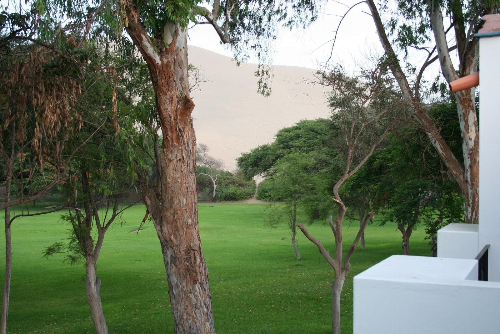 El mundo de pepe hermano per sur ii ica y el enigma for Camping el jardin de las dunas