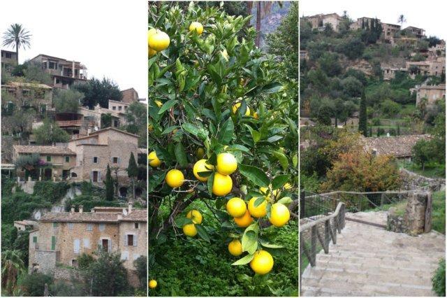 Casas en Deia, Mallorca – Naranjo