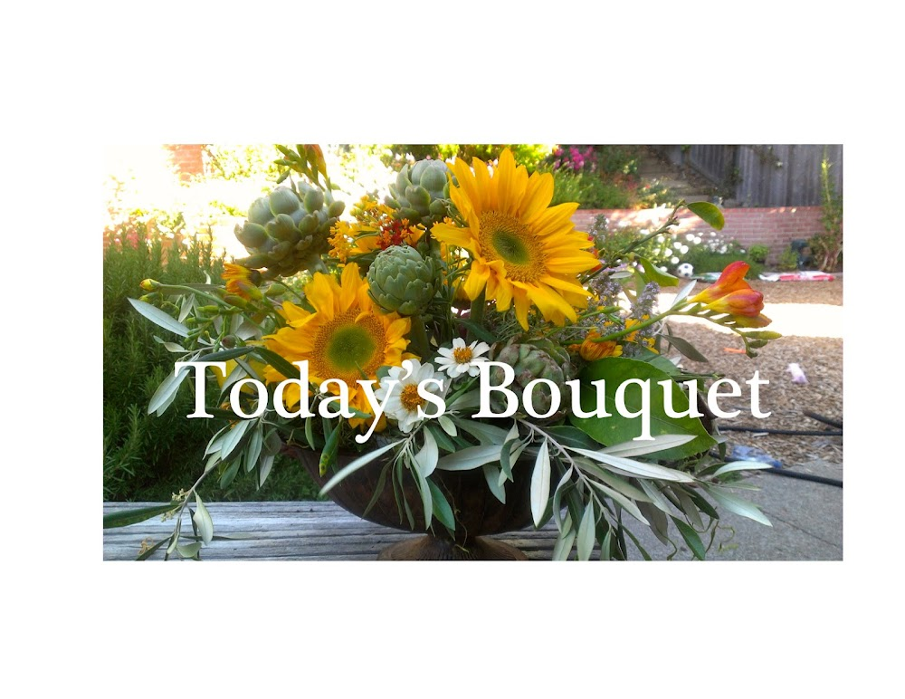 Todays Bouquet