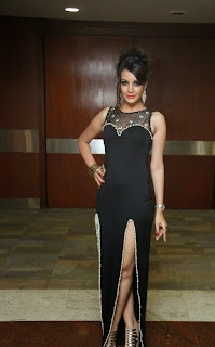 Deeksha Panth Picture Gallery in Long Dress at Pink Affair Fashion Show ~ Celebs Next