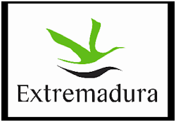 OLIVENZA_ACVFS (EXTREMADURA)