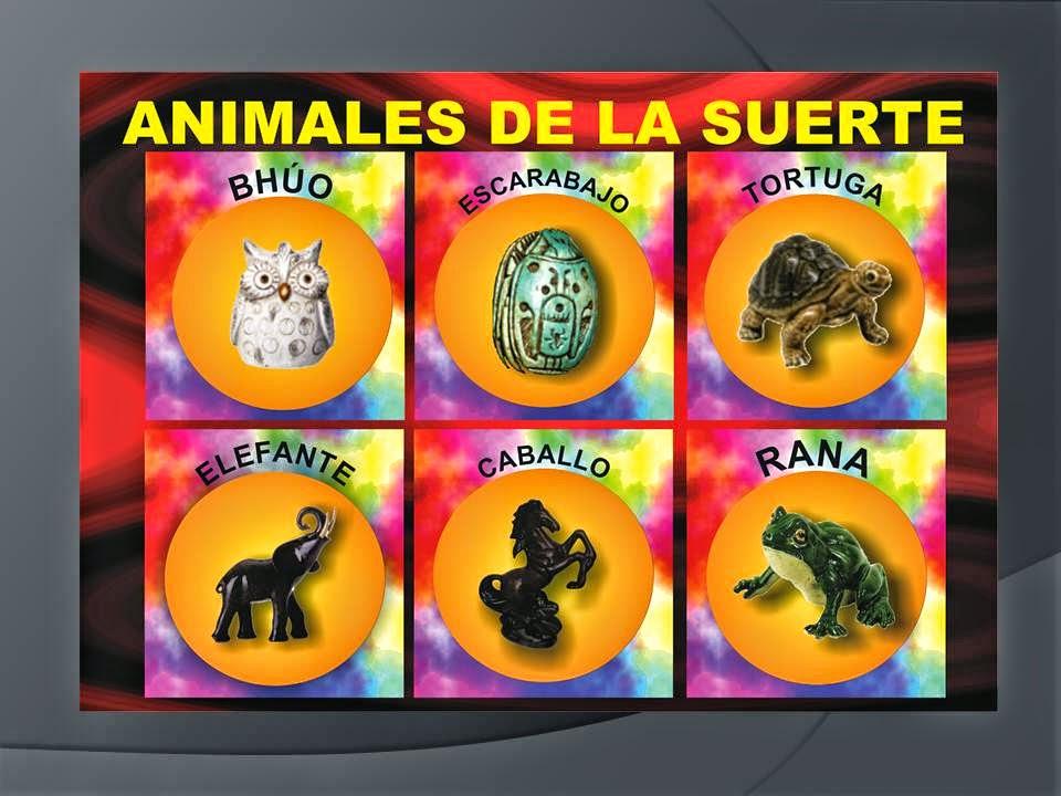Esoterismo ayuda espiritual figuras de animales para la - Cosas para la buena suerte ...