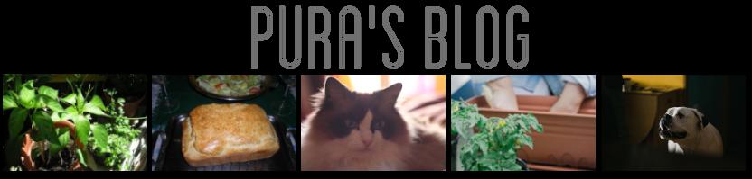 PURA'S BLOG