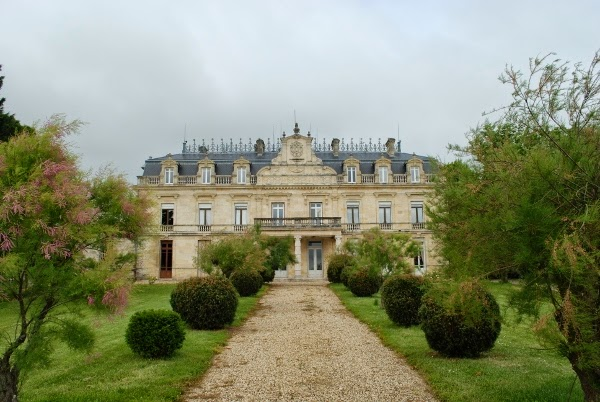 Exploring the vineyards of Bordeaux