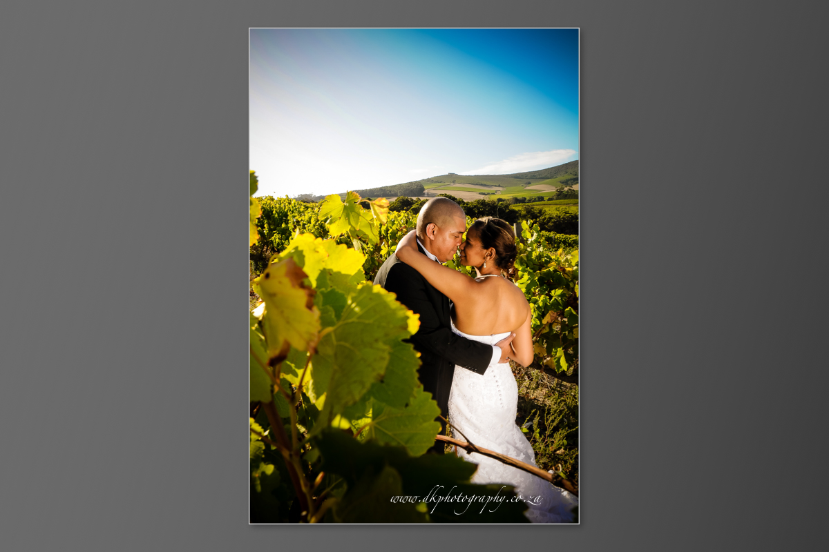 DK Photography DVD+slideshow-298 Cleo & Heinrich's Wedding in D'Aria, Durbanville  Cape Town Wedding photographer