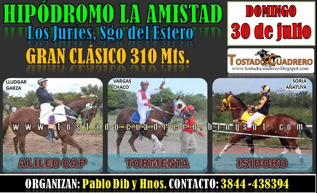 JURIES CLASICO 310