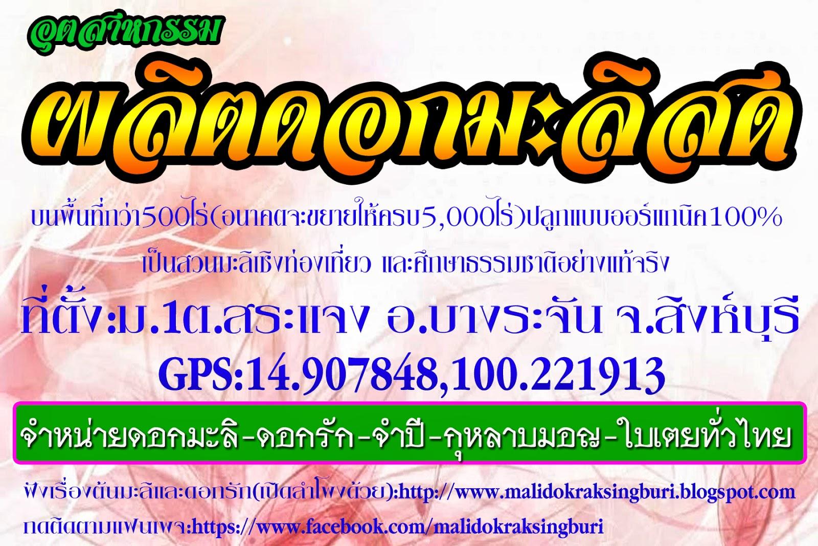 https://www.facebook.com/malidokraksingburi