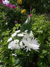 Vit bukett i trädgården