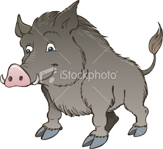 Digitized cartoon version of wild boar  Wild Boar Sketch