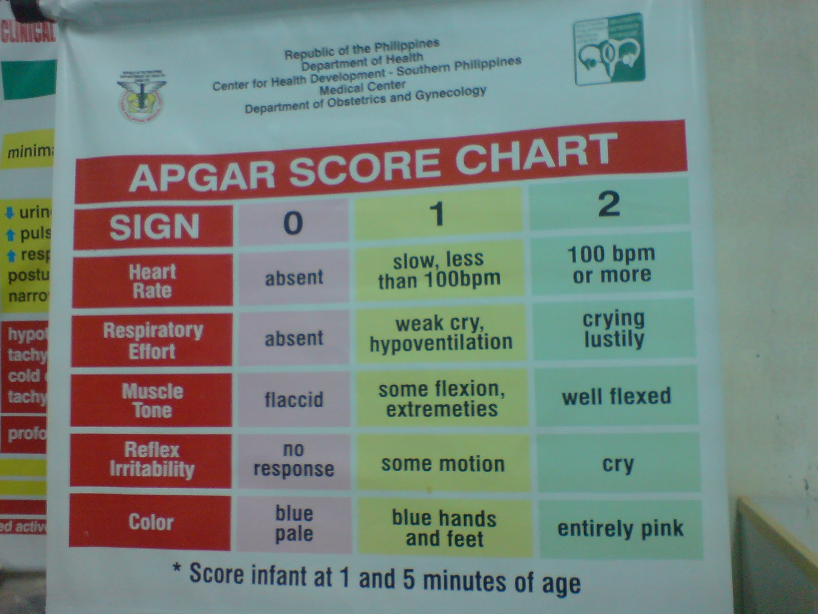 Score Chart Is Used As A Guideline For Newborn Service Providers In Treating Babies From 1 To 5 Minutes Of Age