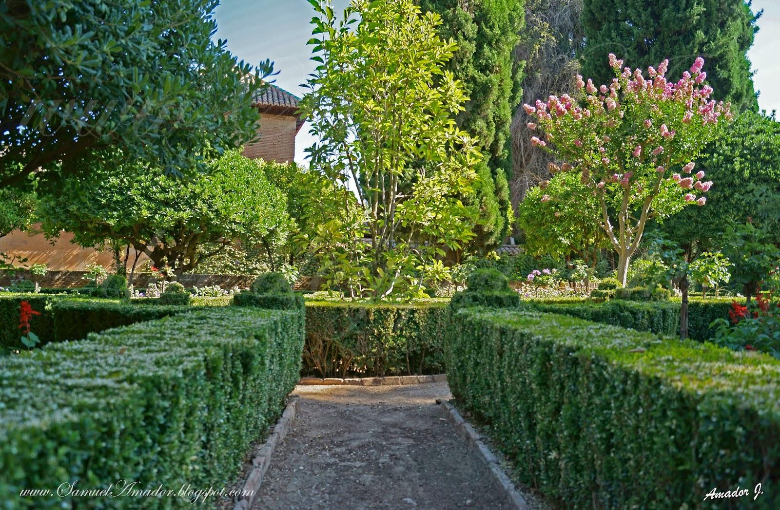 Samuel amador la alhambra de granada jardines el partal for Jardin de la reina granada