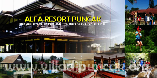 <b>alfa-resort-puncak</b>