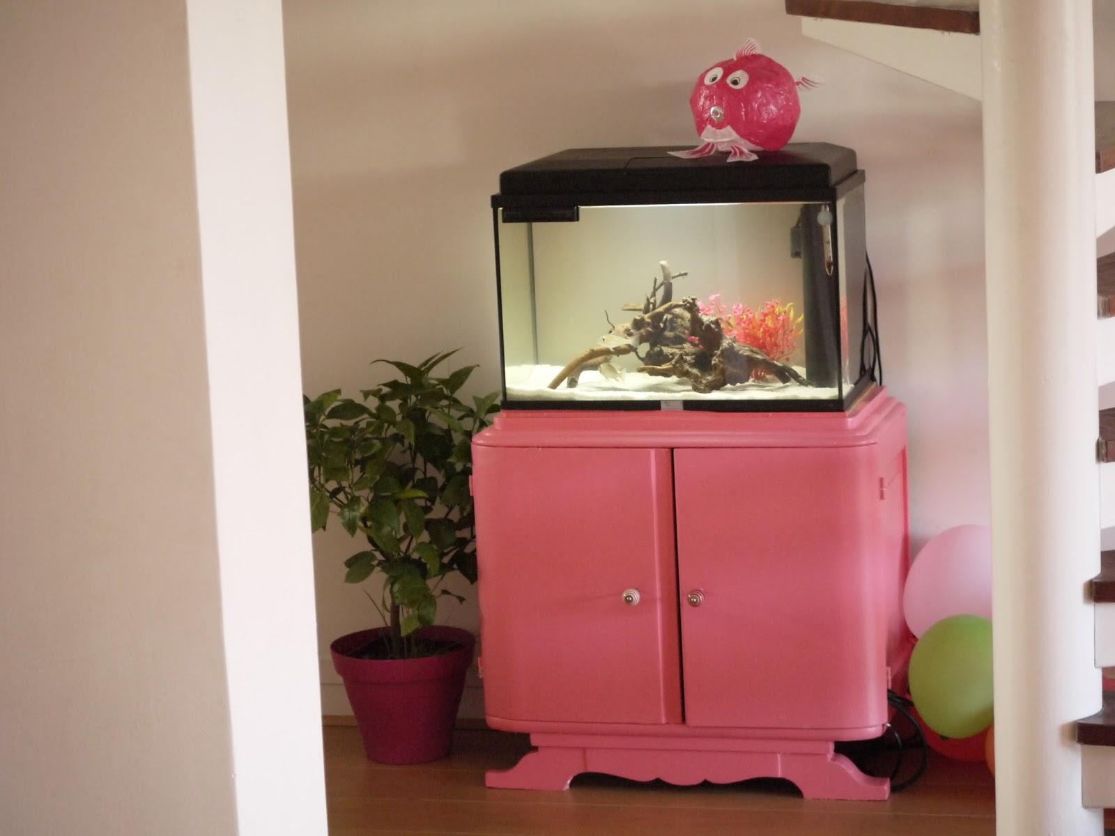 _1210133 Frais De Aquarium Avec Meuble Schème