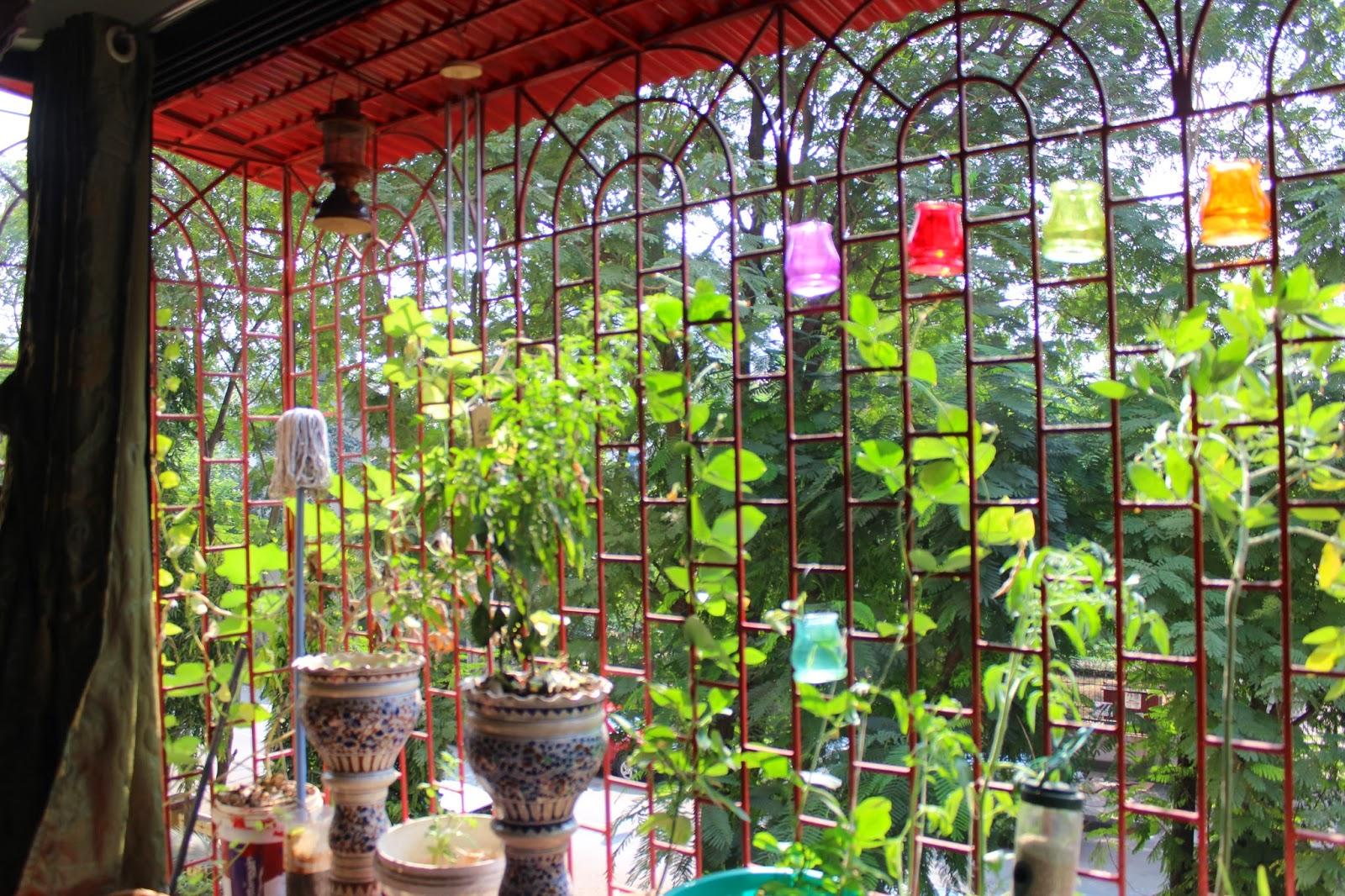 Annaparabrahma The Green Balcony Is Back As The Window