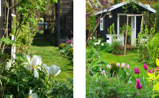 Lille sort og hvidt legehus omgivet af hvide blomster i den frodige have
