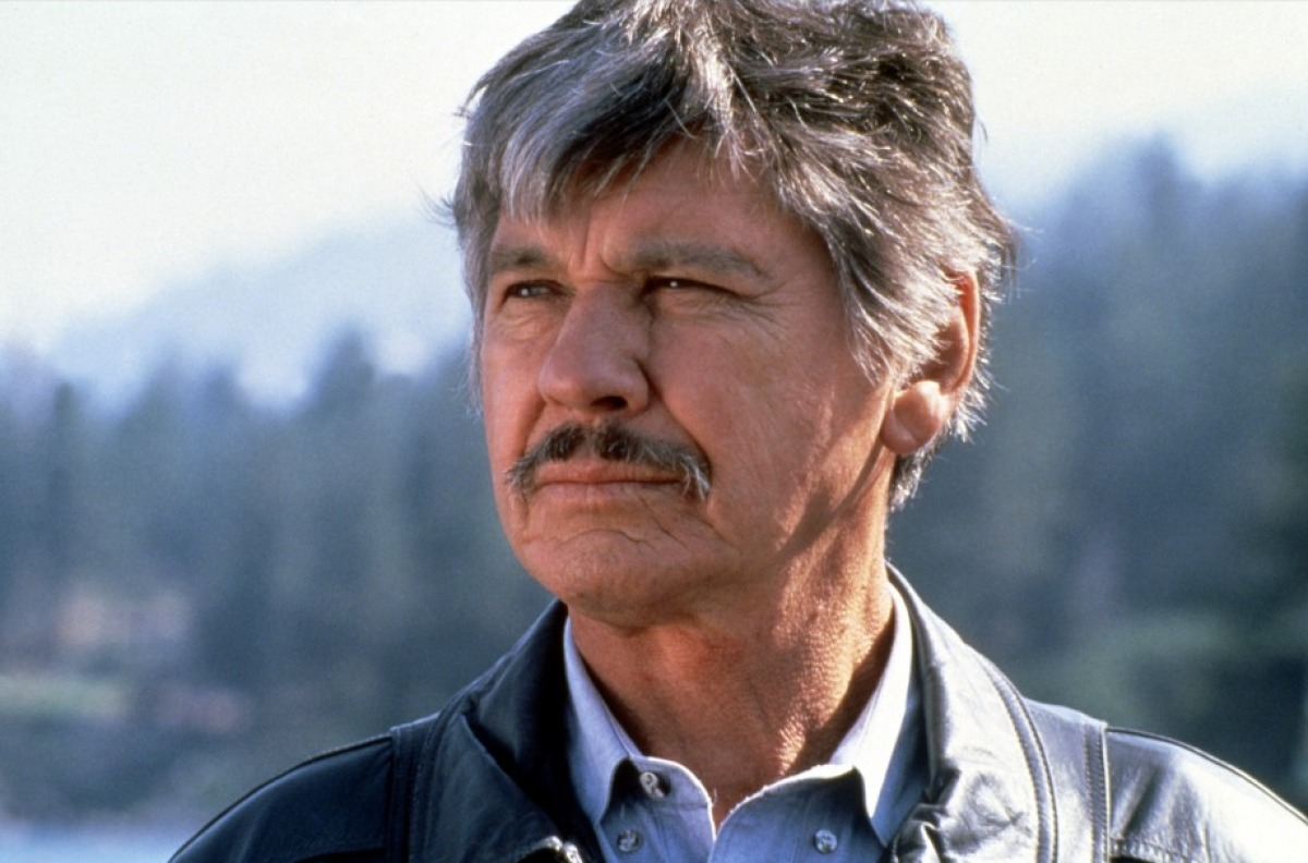 The Movies Of Charles Bronson   The Ace Black Blog