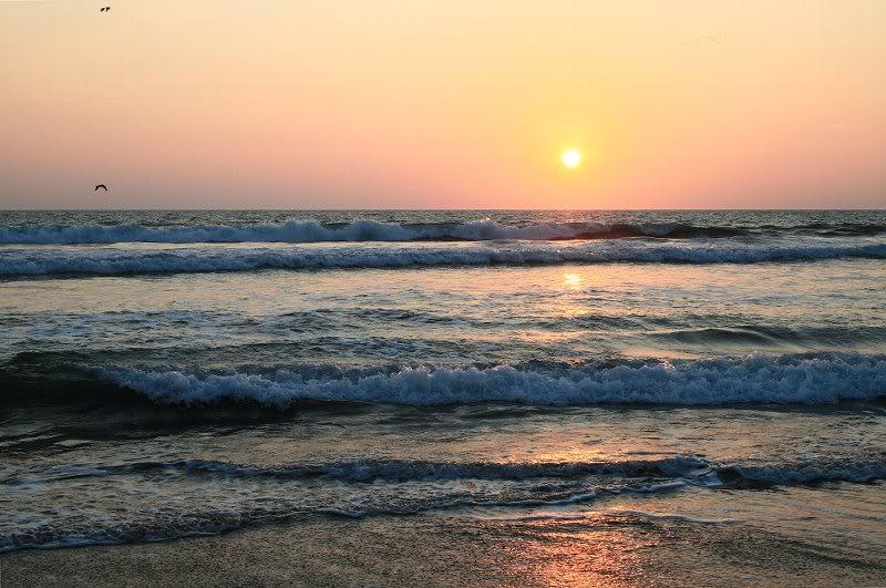 playa el caimanero el rosario