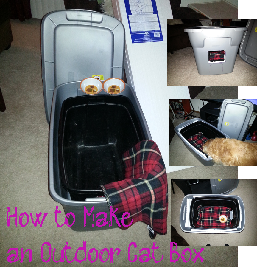 How to Build a Feral Cat Outdoor Shelter Box