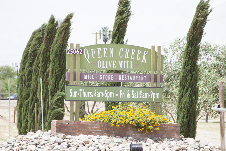 Queen Creek Olive Mill tasting and tour - Sweet Shoppe Mom - Phoenix ...