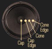 speaker-175x166.jpg
