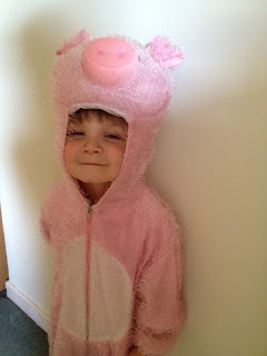Piggy Costume