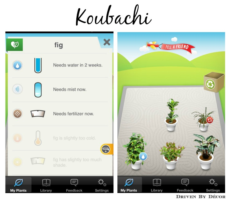 Best Decorating Apps: 10 Best Free Apps If You Love Decorating And DIY