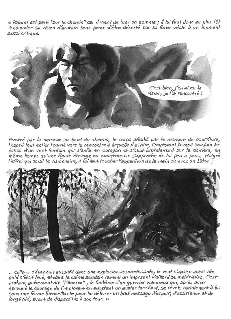recherche d'arutam dans les Lances du crépuscule de Descola, Ayahuasca