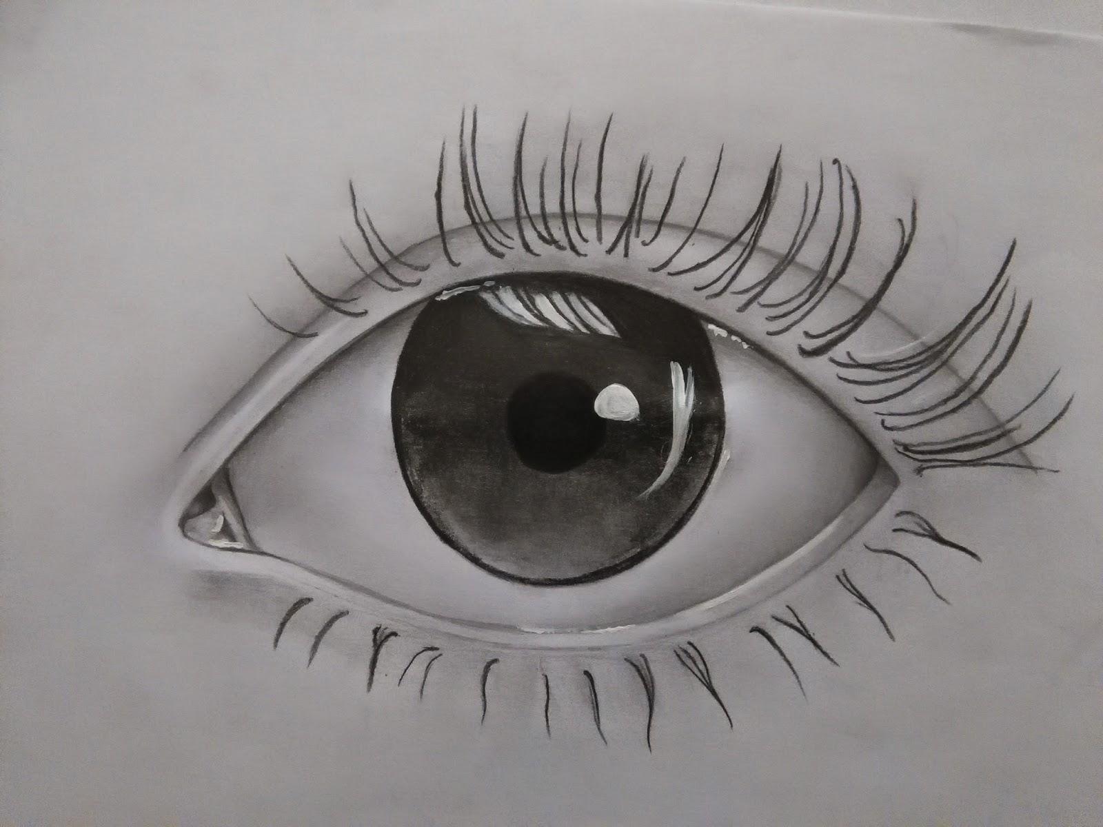 easy eye