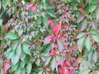 Brianza, L'autunno nel Nord Italia