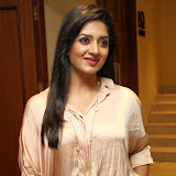 Vimala Raman Latest Photos in Jeans at Trendz Life Style Expo 2014 Inauguration 0029