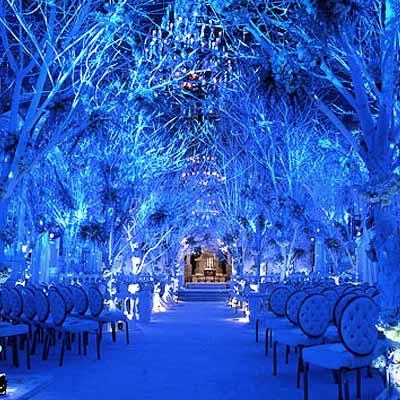 White Pearl Christmas Lights