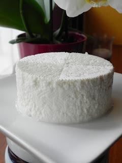 queso fresco de silvestre