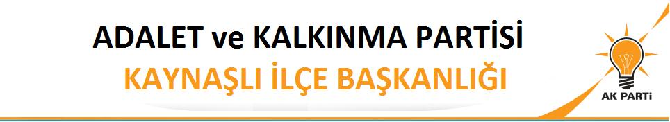 AK PARTİ KAYNASLI