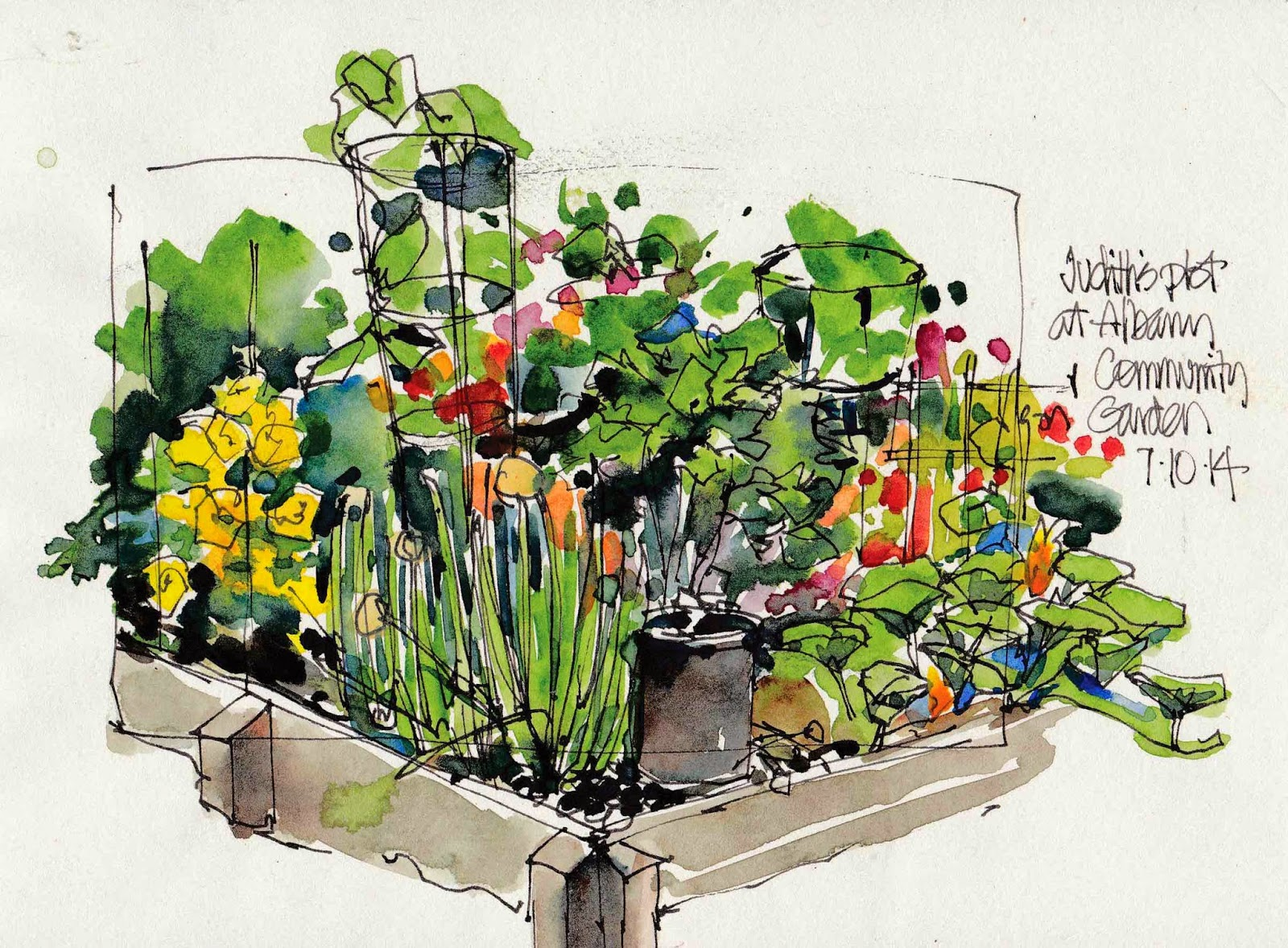 Community garden sketch sketches and more Pinterest Sketches