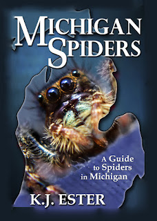 Michigan Spiders Printed Book at Amazon