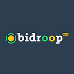 Earn money with bidroop