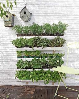donica zioła DIY