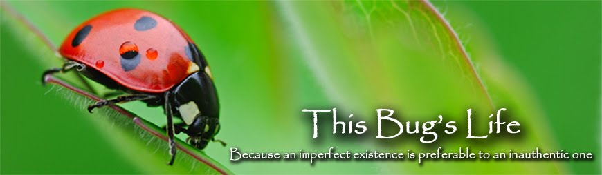 This Bug's Life