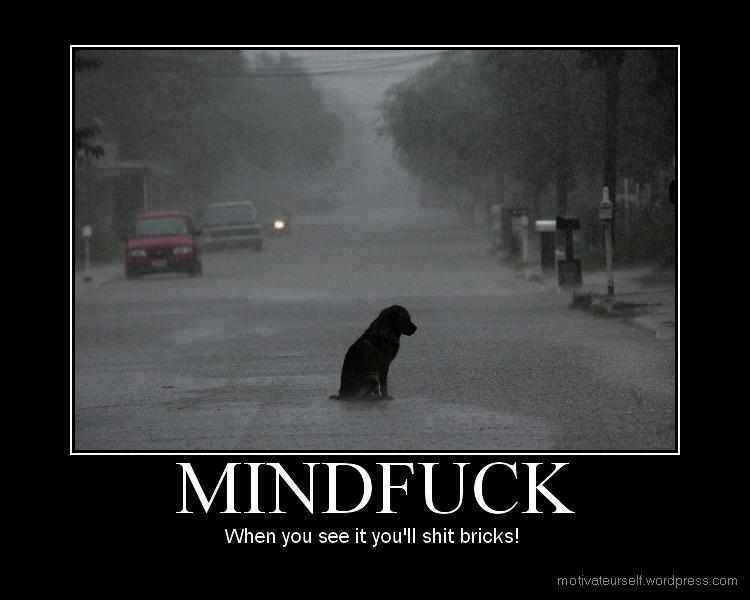 Juego de MindFuck - Página 2 Mindfuck14