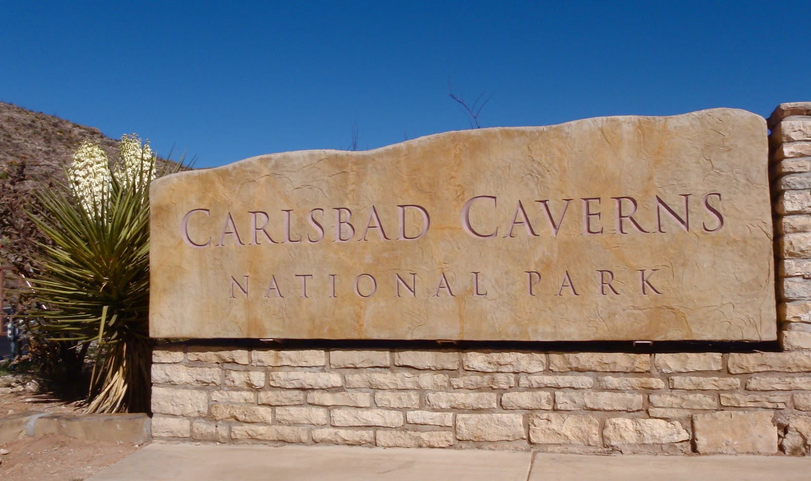 states caverns essay Florida caverns state park, marianna: see 786 reviews, articles, and 781 photos of florida caverns state park, ranked no1 on tripadvisor among 16.