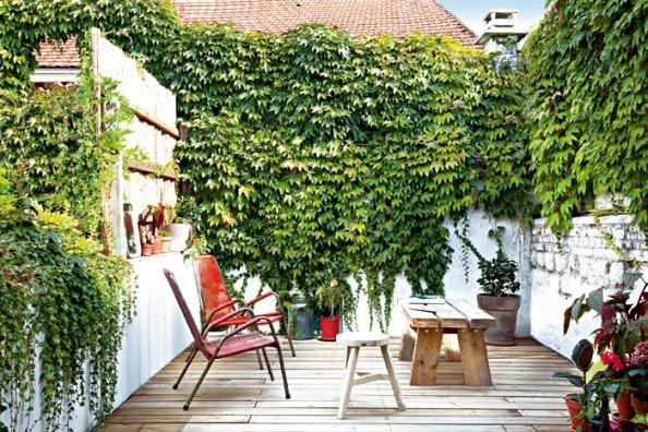 esse jardim, que tem ainda um painel de bambu para esconder o muro