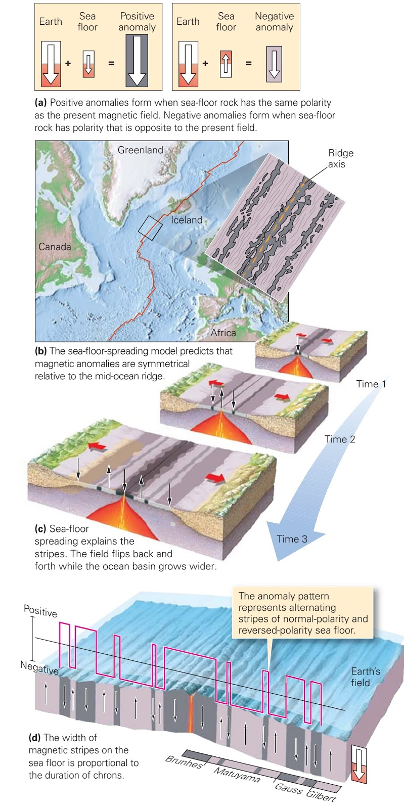 Evidence for sea floor spreading learning geology for How did scientists determine the age of the ocean floor