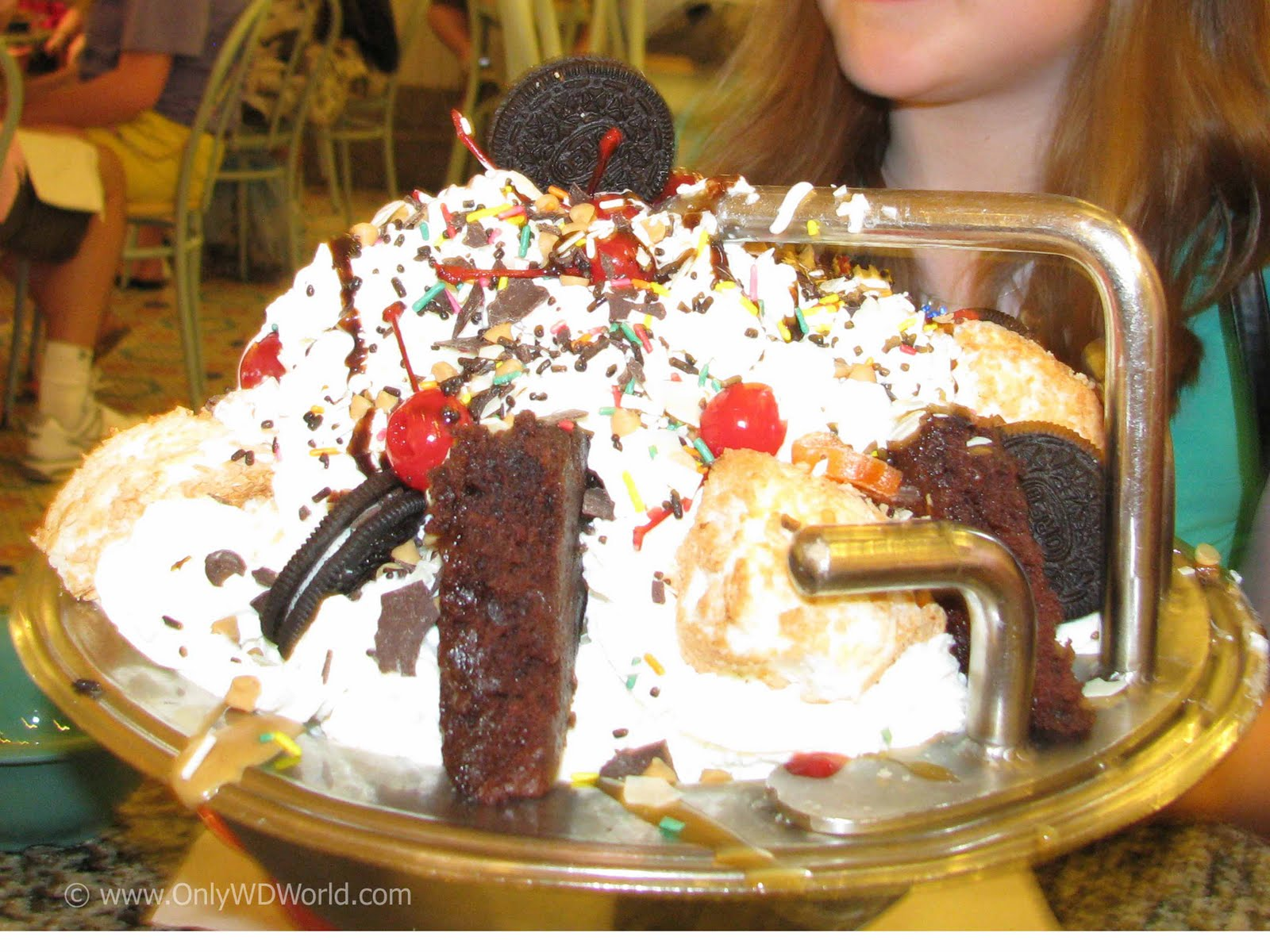 beaches & cream kitchen sink: the ultimate disney world family