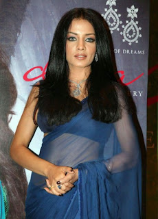 Celina Jaitley Hot in Blue Transparent Saree Photos