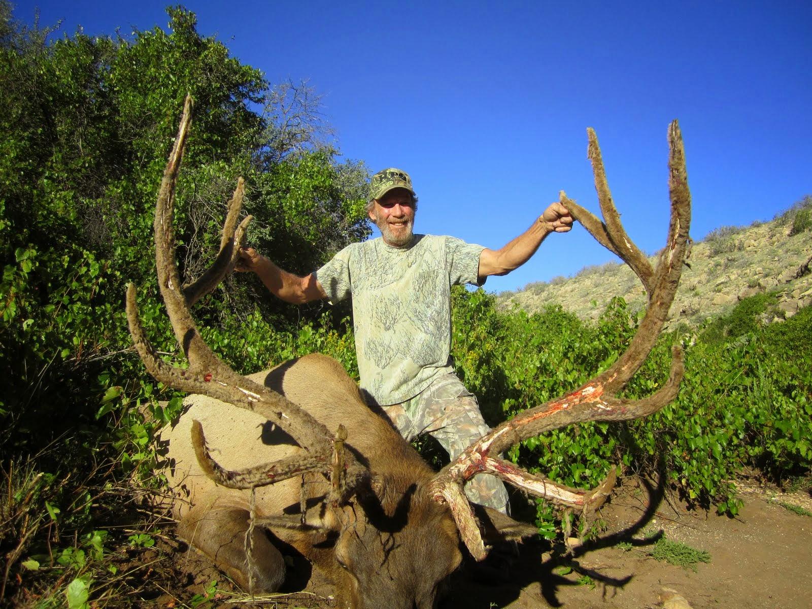 2014 Arizona Super raffle Elk